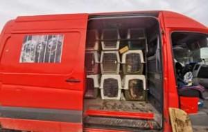 polenhunde-ankunft-transporter-300x191 14 Hunde aus Polen suchen Aufnahmepaten