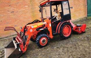wardenburg-neuer-traktor-schäferhund Vermittlungstier