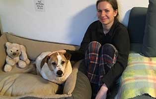 hund-bilbo-zuhause-gefunden-frauchen Tierische Geschichten - Lustiges und spannendes