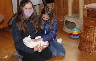 kinder-sammeln-für-katzenstation-muenchen Tierische Geschichten - Katzenstation München