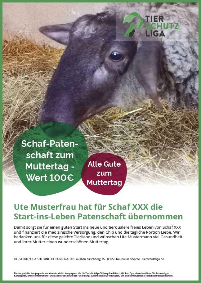 Urkunde-start-ins-leben-muttertag 40 Schafe suchen Start-ins-Leben Paten Teil1