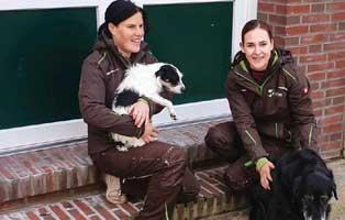 beitragsbild-jahresbericht-wardenburg-2019 Aktuelles - Tierschutzhof Wardenburg