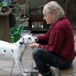 hund-nala-dalmatiner-weiblich-patentier01-150x150 Nana - Dalmatiner (OH001/21)