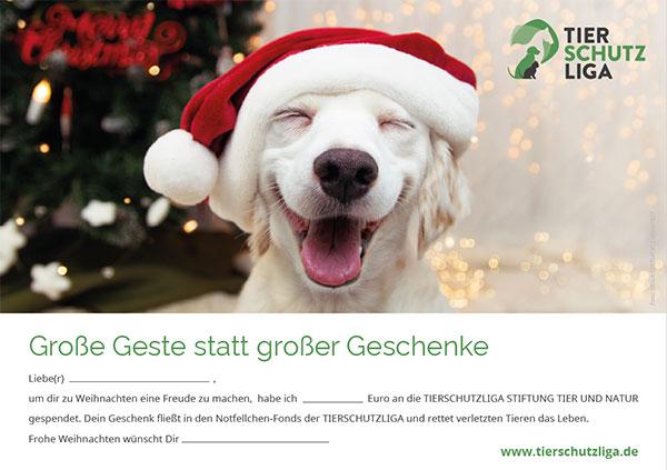 spende-zum-weihnachten-hund-klein Spenden und Schenken: Verschenken Sie Hoffnung für ein Tier