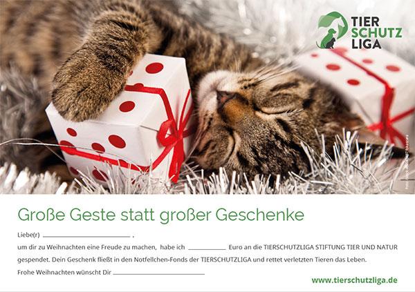 spende-zum-weihnachten-katze-klein Spenden und Schenken: Verschenken Sie Hoffnung für ein Tier