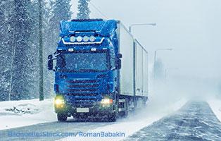 winterfutterhilfe-ungarn-hund-lkw Ein LKW voll Futter für frierende ungarische Straßentiere
