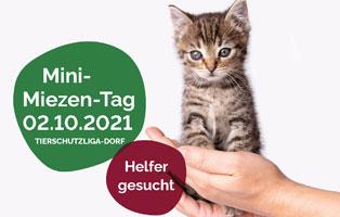 beitragsbild-mini-miezen-tag Nagerstation Freising